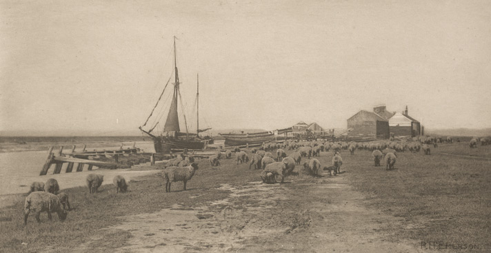 Blackshore, River Blythe, Suffolk